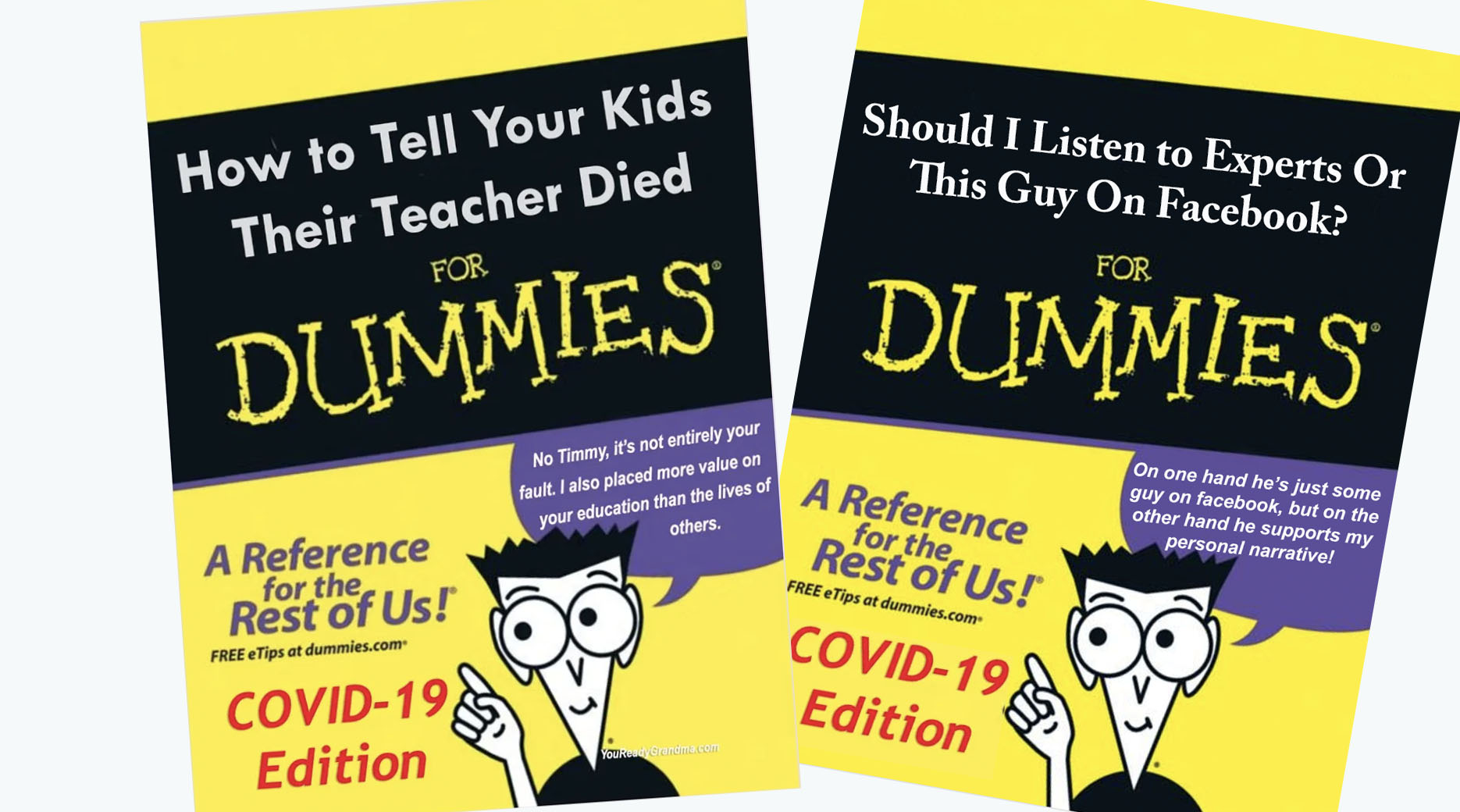 Covid-19 for dummies NY Times best seller