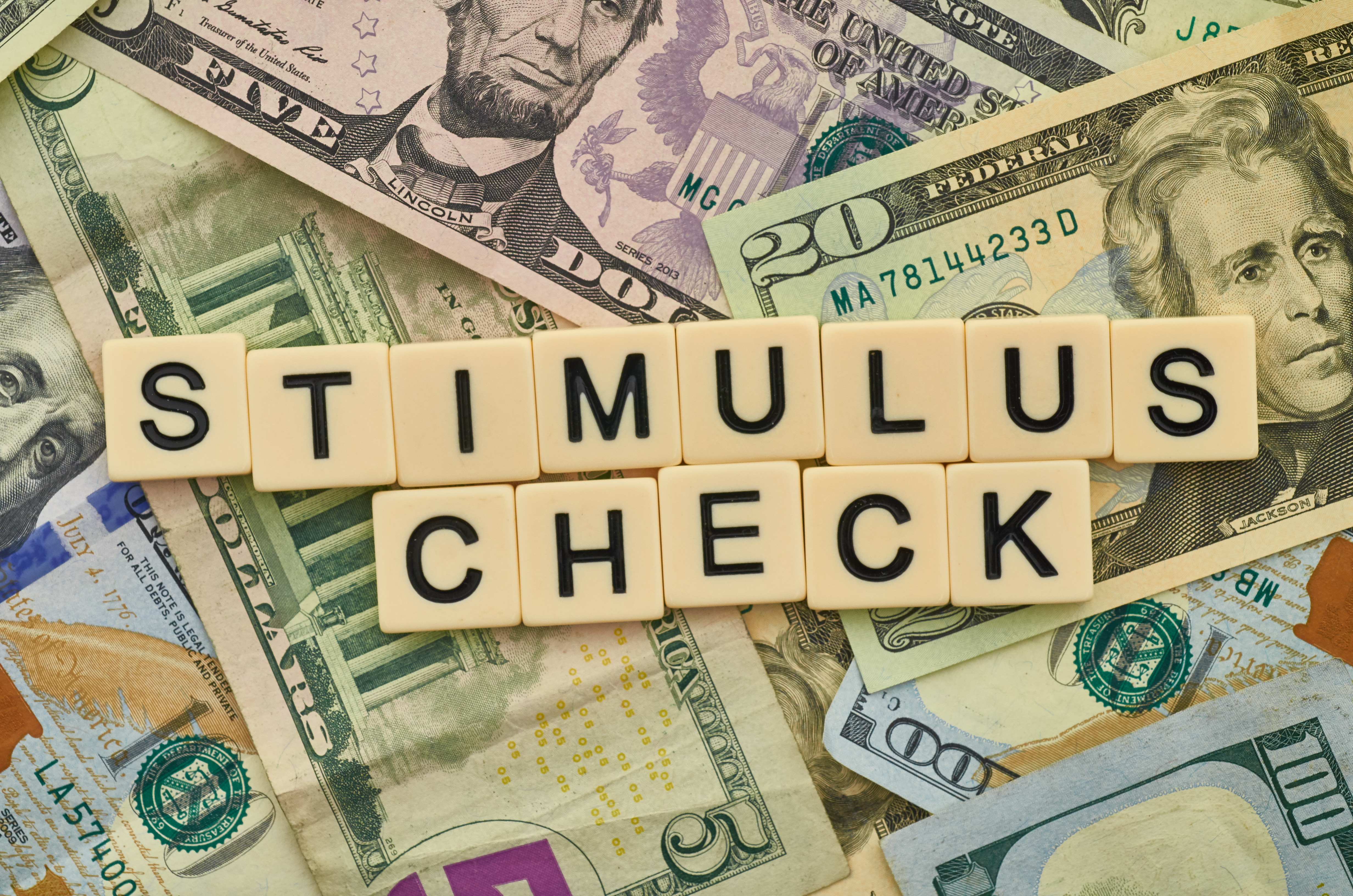 Stimulus Passes Along Party Lines Meaning Only Democrat Voters Will Receive Checks