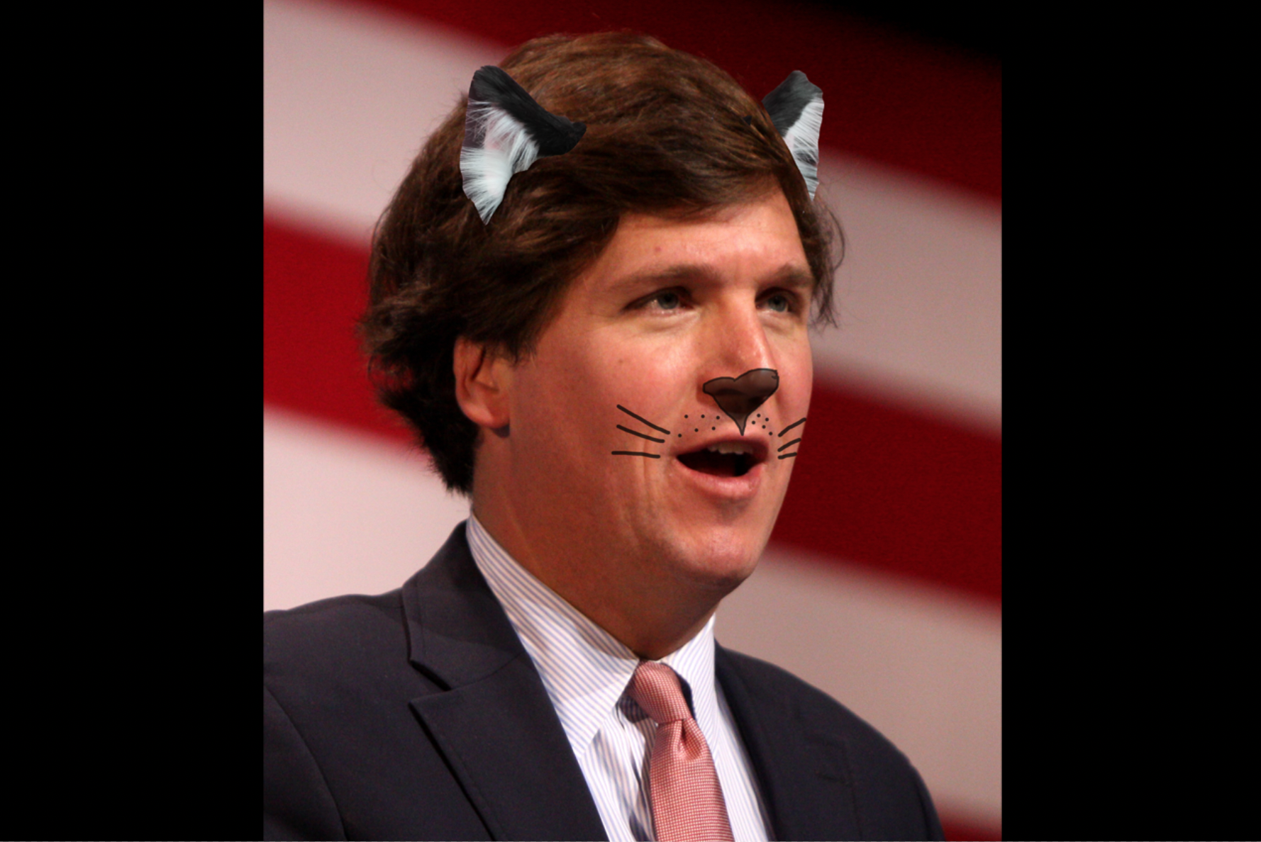 Dressed As A Cat, Tucker Carlson Claims Biden Declawed New White House Pet In 'Thiny-Veiled Attack On 2nd Amendment'